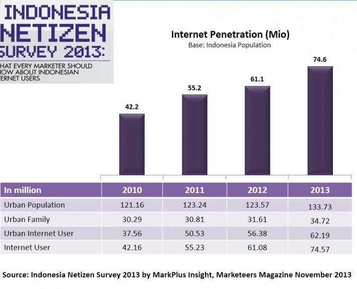 indonesia pengguna internet 2013